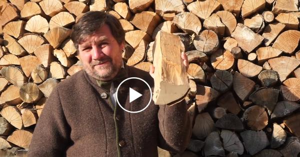 Ecco come scegliere pellet e legna per riscaldare rispettando l'ambiente